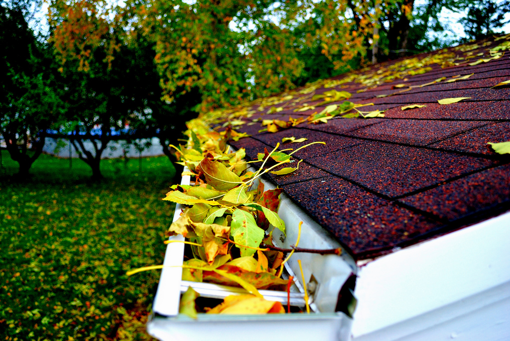 Fresh Green Solutions offers commercial & residential gutter cleaning service.